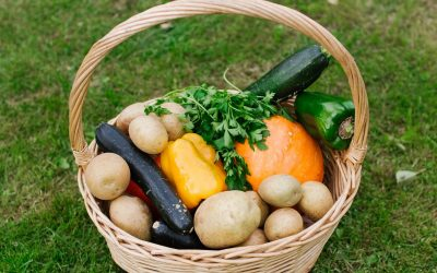 Recherche cuisiniers et jardiniers